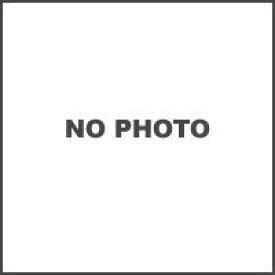 ラフ&ロード ビートクリーム 30g RR3307