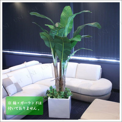 【送料無料】Funderful 人工観葉植物 光触媒 バナナツリー 205cm 【フェイクグリーン 果樹木 大きい 消臭 インテリアグリーン 抗菌】
