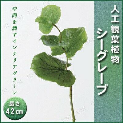 【取寄品】 人工観葉植物 シーグレープ 42cm [ フェイク インテリア ミニ観葉植物 ミニサイズ 小さい ]