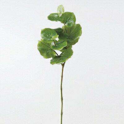 【取寄品】 人工観葉植物 シーグレープ 71cm 【 フェイクグリーン インテリアグリーン 】