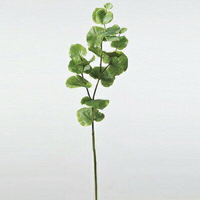 【取寄品】 人工観葉植物 シーグレープ 107cm 【 フェイクグリーン インテリアグリーン 】