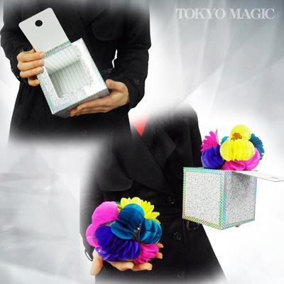 ●マジック関連●ファンタジー・ボックス●ACS-1181