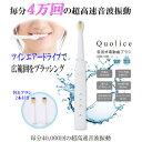 """Quolice音波式""Quolice音波式电动牙刷AQS-1035""(折扣服务对象外)牙齿护理健康家电电动牙刷牙刷音波式超声波电动牙刷AQS-1035"""