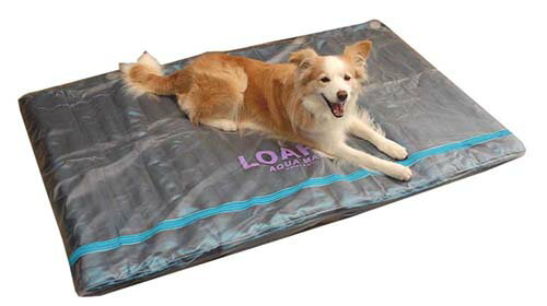 DOGS 犬の ウォーターベッド4L ( 介護 床ずれ 熱中症 予防 防止 体圧分散 エコクール&ウォーム 老犬 犬のベッド 犬のひんやりマット )