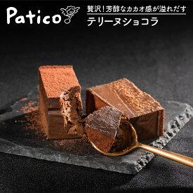生チョコケーキ テリーヌショコラ 濃厚 ギフト お取り寄せスイーツ カカオトレースチョコ使用 敬老の日