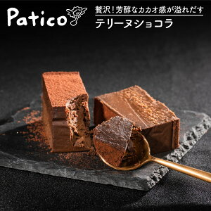 生チョコケーキ テリーヌショコラ 濃厚 ギフト お取り寄せスイーツ カカオトレースチョコ使用 内祝い お返し 暑中見舞い 残暑見舞い 手土産