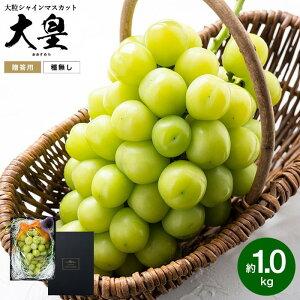 大皇(おおすめら) シャインマスカット 約1.0kg(お届け:9月下旬以降)送料無料 / 兵庫県産 葡萄 ブドウ ぶどう 高級 フルーツ ギフト 期間限定
