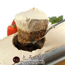 【人気の新食感チーズケーキ!】とろける生チーズケーキ チョコレート