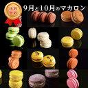 【送料無料・ギフト】9月と10月のマカロン(12種12個) 熨斗・クール便 詰め合わせ 洋菓子 お土産 記念日 お返し お誕…