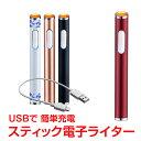 電子ライター 充電式 usb スリム USBライター ガス・オイル不要 趣味 コレクション タバコ 煙草 電熱式 rt012