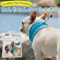 友達へのプレゼントに犬の暑さ対策におしゃれなクールネックを探しています。おすすめを教えて!