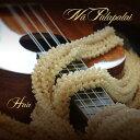 【ハワイアン CD】 Ha'a / Na Palapalai (ハア/ナー・パラパライ) 【メール便可】[輸入盤]
