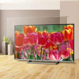 【送料無料・代引不可】液晶テレビ保護パネル ブルーライトカット テレビフィルター 反射軽減タイプ 55型 55インチ EAV-566-55