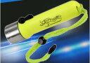 完全防水 トィンクライト 水中 ライト ダイビング 20m ハンズフリー バンド 海 180lm マリンスポーツ 潜水 レジャー …
