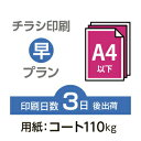 2500枚■【チラシ印刷・フライヤー印刷】A4サイズ以下 データ入稿(オリジナル/激安) A4(B5)コート110kg/納期3日/両面フルカラー
