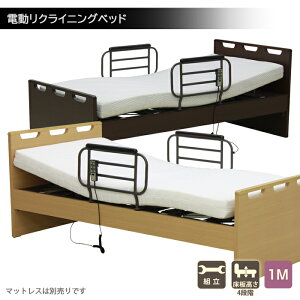 リクライニングベッド 介護用ベッド 電動ベッド シングルベッド 1モーター式 ベッドフレーム サイドガード付き リモコン 手すり 介護 医療 ブラウン グリップ付き 安全ネット ベット フレー