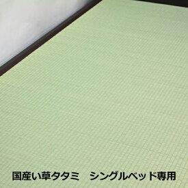 い草 たたみ タタミ 畳 1枚敷 シングル シングルサイズ 国産 日本製 タタミのみ 単体 イ草 イグサ 送料無料