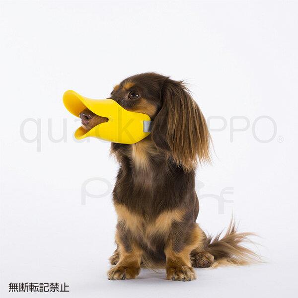 【オッポ】OPPO シリコン口輪 quack クアック SMサイズ