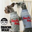 【70%OFF☆半額以下】【2018年春夏新作】【BEACHE HOLIC】ビーチェホリックボーダーシャツ小型犬&中型犬サイズ