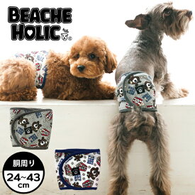 【2019年春夏】【BEACHE HOLIC】ビーチェホリックポップコーンパイルマナーベルト小型犬&中型犬サイズ