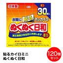 日本製 興和 貼るカイロ ミニ ホッカイロ ぬくぬく日和 衣類に貼るカイロ 30個入り × 4個 (120個入) 貼る ホッカイ…
