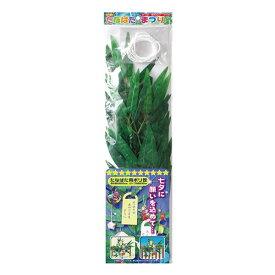 たなばた用ポリ笹 トーヨー 410004