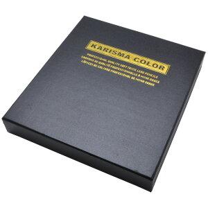 ベロール 色鉛筆 カリスマカラーペンシル BE-NP955 48色セット【 プレゼント ギフト 】【ペンハウス】 (11040)