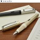 【万年筆 名入れ】ペリカン 万年筆 ペリカーノアップ 【Pelikan】【Fountain pen】【 プレゼント ギフト 】【万年筆・ボールペンのペンハウス】 (3000)