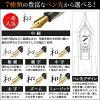 Pent fountain pen by Sailor SAIJIKI SAKURA