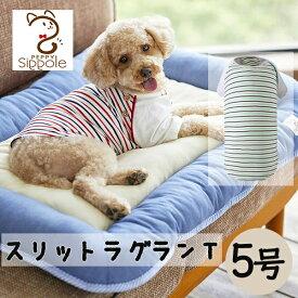 セール Sippole スリットラグランT 5号 犬 ウェア 服 カジュアル ボーダー レッド グリーン お揃い 中型犬 かわいい おしゃれ シンプル しっぽる PEPPY ペピイ
