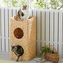 【セール29%OFF】ラタン調2階建ベッド【多頭 キャットタワー 猫タワー 据え置き ハウス トンネル 猫 猫用品 猫用】PEPPY(ペピイ)