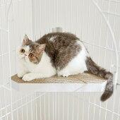 <ケージ用ステップコーナー>猫ケージ用ステップ階段取付簡単ダンボール製爪とぎPEPPYペピイ