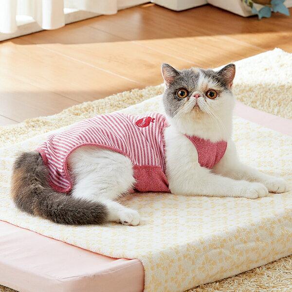 着心地いいおむつカバー 猫 服 手術後 国産 レッド ブルー ベージュ ペピイオリジナル 2017冬