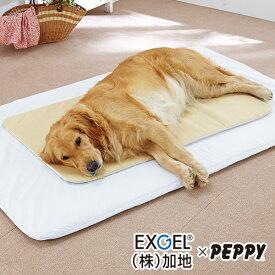 エクスジェルマット M 50×60cm 犬 介護ベッド 国産 ペピイオリジナル