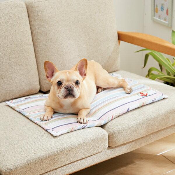 さわやかマリンクールダウンマット M 幅80×奥行60×厚さ1cm マルチ チェック カラフル ベッド 犬 猫 綿 コットン ペピイオリジナル 2018春夏