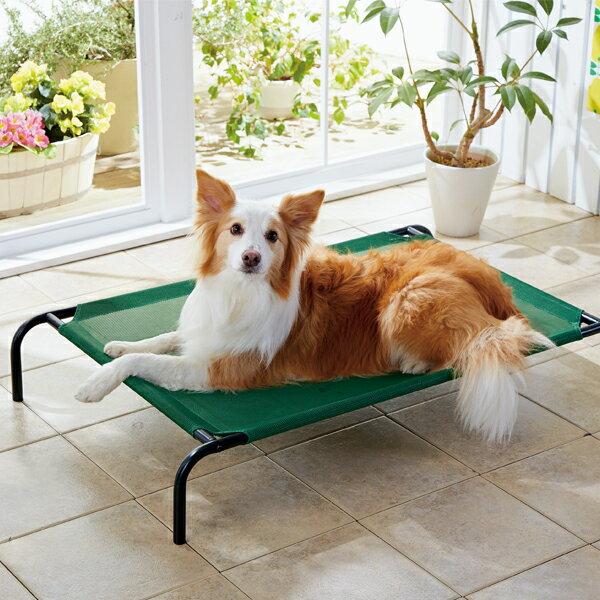 セール33%OFF お昼寝メッシュベッド M 幅90×奥行59×高さ18cm ハンモック 夏 通気性 犬 ペット ペピイ 2018夏