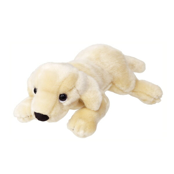 ぬいぐるみ 犬 ラブラドールレトリバー ホワイト SSサイズ 取寄品 3週間前後 新生活 プレゼント
