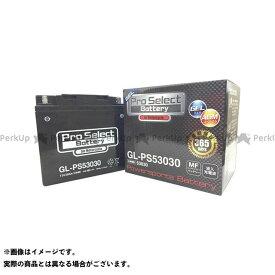 送料無料 Pro Select Battery 汎用 バッテリー関連パーツ GL-PS53030(53030互換) ジェルタイプ 液入り充電済み
