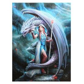 (アン・ストークス) Anne Stokes キャンバス Dragon Mage ウォールアート 看板 デコレーション 飾り (19 x 25cm) 【楽天海外直送】