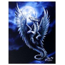 (エイジ・オブ・ドラゴンズ) Age Of Dragons キャンバス Silver Dragon ウォールアート 看板 デコレーション 飾り (19 x 25cm) 【楽天海外直送】