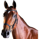 (カレッジエイト) Collegiate 馬用 Comfitec レザー トレーニング ブライドル 頭絡 馬具 乗馬 ホースライディング 【…