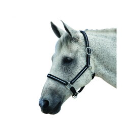 (ローマ) Roma 馬用 反射 ヘッドカラー 頭絡 乗馬 ホースライディング 【楽天海外直送】