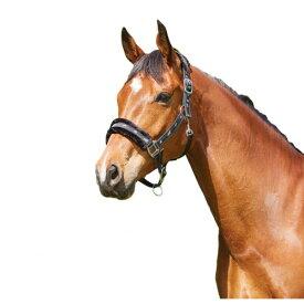 (サクソン) Saxon 馬用 フリース裏地 リボン ヘッドカラー 頭絡 馬具 乗馬 ホースライディング 【楽天海外直送】
