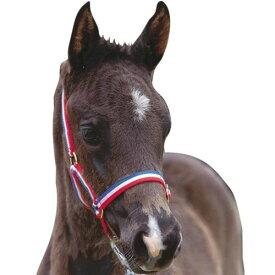 (ローマ) Roma 馬用 フォール ヘッドカラー 仔馬用 頭絡 馬具 乗馬 ホースライディング 【楽天海外直送】