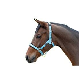 (コテージクラフト) Cottage Craft 馬用 パッド入り ヘッドカラー 馬具 乗馬 ホースライディング 【楽天海外直送】