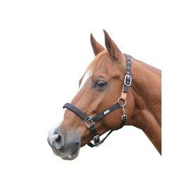 (ローマ) Roma 馬用 ブレークアウェイ ヘッドカラー II 頭絡 馬具 乗馬 ホースライディング 【楽天海外直送】