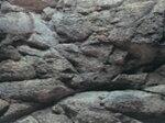 コトブキ3Dスクリーンマラウィの湖底岩石600