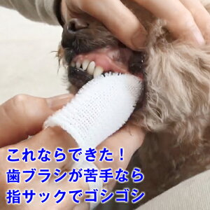 【犬 猫 用】 指サックの歯ブラシ「オクチブラシ」(2枚入り)これなら続けられますデンタルケア ( 歯磨き ペット 歯石除去 歯石取り 歯垢 歯ブラシ 犬の歯磨き 犬歯磨き 口臭 歯周病 予防