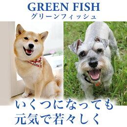 魚のEPA、DHAで賢く!痴呆症予防!「グリーンフィッシュ」(GreenFish)犬ドライフード中粒2kg【無添加】(犬いぬ犬用品犬用フード犬のえさプレミアムフードペットペット用品餌エサえさごはん子犬成犬シニア高齢犬目やに目ヤニ涙やけ涙ヤケアレルギー)