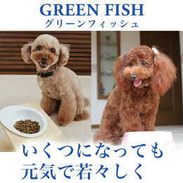 魚のEPA、DHAで賢く!痴呆症予防!「グリーンフィッシュ」(GreenFish)犬ドライフード小粒2kg【無添加】(犬いぬ犬用品犬用フード犬のえさプレミアムフードペットペット用品餌エサえさごはん子犬成犬シニア高齢犬目やに目ヤニ涙やけ涙ヤケアレルギー)